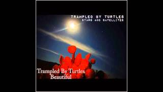 Watch Trampled By Turtles Beautiful video