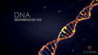 Cinema 4D, AE DNA TEST 1