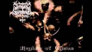 Ritual Suicidal - Regime of chaos