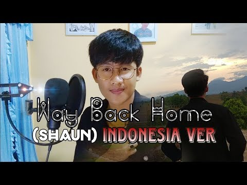 Way Back Home (SHAUN) Cover Indonesia Ver.