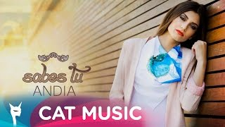 ANDIA - Sabes tu (Lyric Video)