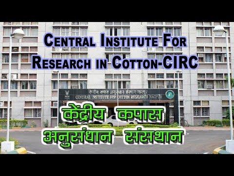 Central Institute of Cotton Research -CICR | कपास की वैज्ञानिक खेती पर जानकारी | Cotton Farming