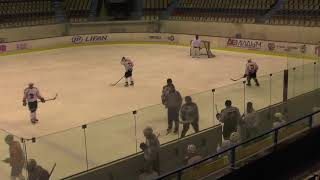 Хоккей ЛНХЛ 1/2 Ударник-Оптимист 10.04.2018 г. 1 пер. Пермь