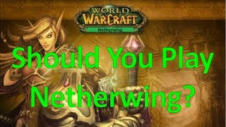 Should You Play Netherwing? | Perspective from Nostalrius Veteran