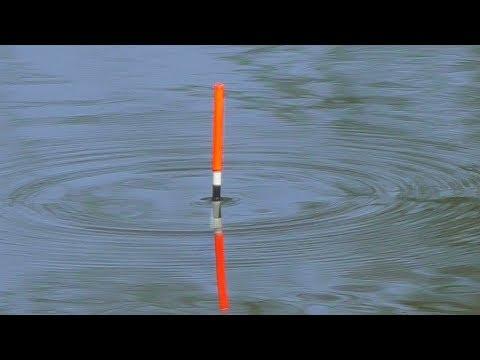 Как поймать крупного карася среди мелкого