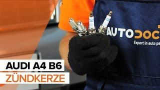 Wie AUDI A4 B6 Zündkerze wechseln TUTORIAL | AUTODOC