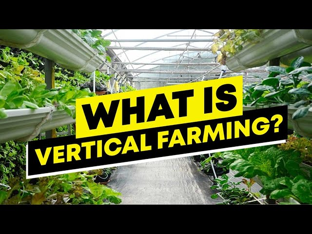 What Is Vertical Farming? And How Vertical Farming Works.
