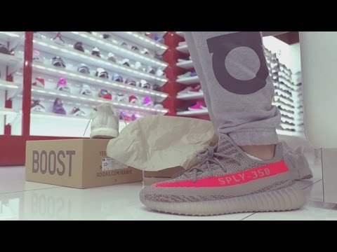 adidas Yeezy Boost 350 V2 Release at Shoe Palace in San Jose, CA