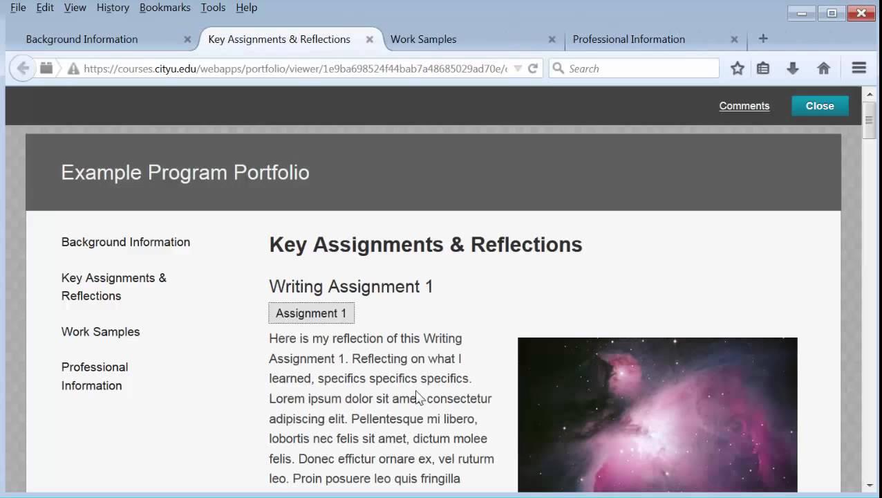 portfolio example