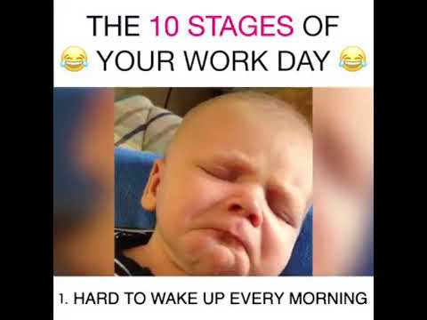 Funny Videos Of Work Days