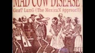 BROWN   MAD COW DISEASE