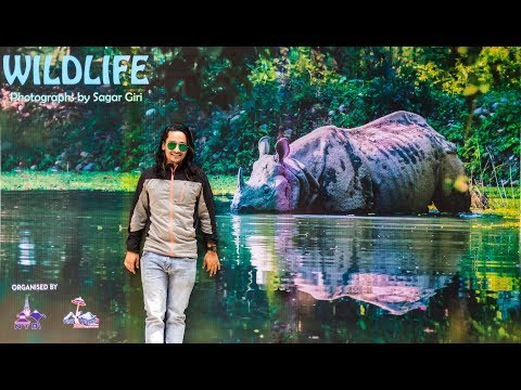 Journey To My Wildlife Photo Exhibition At Kathmandu Organized By Nepal Tourism Board.