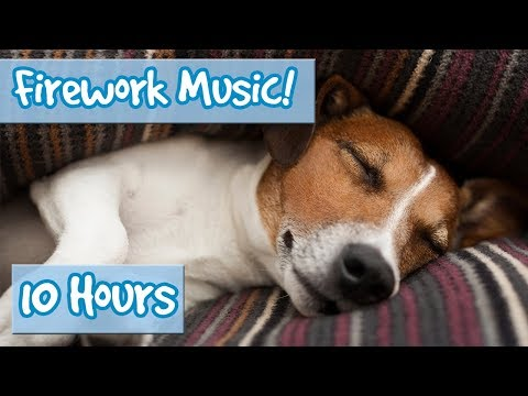 Relaxing Music for Dogs to calm from Fireworks, loud noises - includes desensitising sound effects