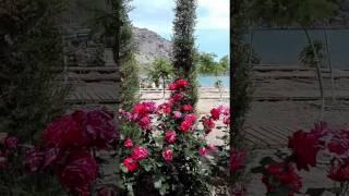видео Отдых в Ейске 2017 - 2018 - Цены на Новый год 2018, частный сектор Ейска на Азовском море без посредников, недорого, отзывы 2016, фото