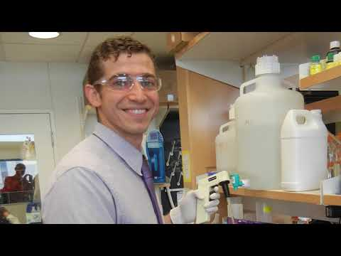 Dr. Osama Kashlan Research Update for Program for Neurology Research & Discovery