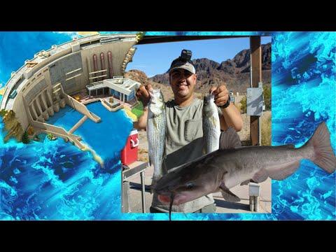 HOOVER DAM CATFISH FISHING