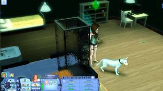 Jaded Sims 3 - 8 / 23