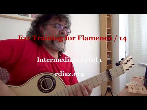 Ear training (14 Harmonic minor scale) in modern flamenco /Learn Paco de Lucia´s Style/Ruben Diaz