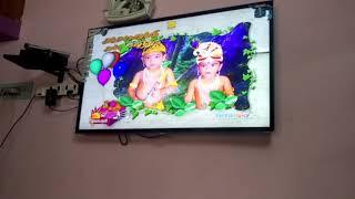 Anush & Avandhika Birthday @ Isaiaruvi