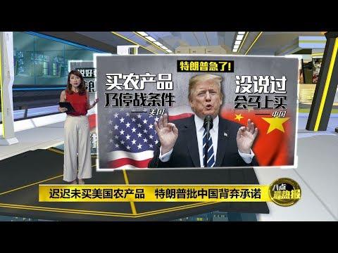 八点最热报 12/07/2019 中国迟迟未买美国农产品  击中特朗普要害?