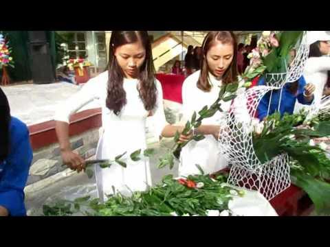 cấm hoa 20/11 tại kienthuccuatoi.com