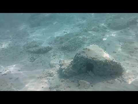 Furibee Q6 Underwater Test - 720p 30fps Slow Motion Mode