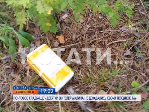 АНОНС: почтовое кладбище обнаружено в пос. Мулино