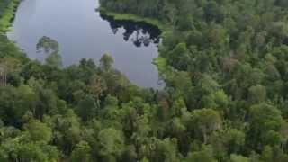 Supporting forests, people & biodiversity (RER) Mp3