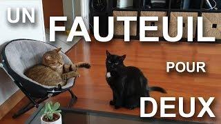 UN FAUTEUIL POUR DEUX (feat. BERNARD WERBER) - PAROLE DE CHAT
