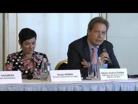 Interviu acordat de Edmon Oude Elferink, Partener - CMS EU Law Office (Bruxelles)