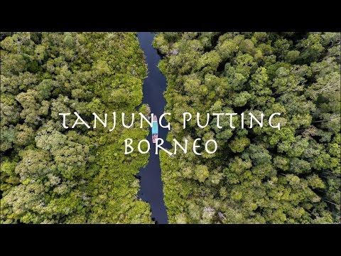 Wonderful Indonesia | Tanjung Puting National Park | Borneo