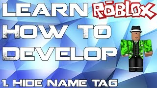 How To Hide The Name Tag In A Roblox Game