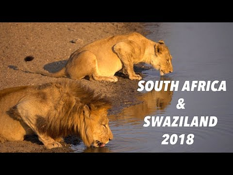 South Africa & Swaziland 2018