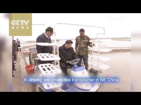 Xi Jinping test drives rice transplanter in NE China
