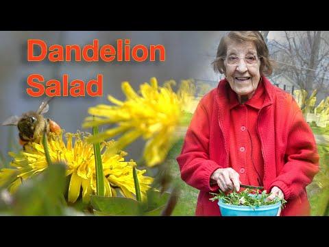 Great Depression Cooking - Dandelion Salad