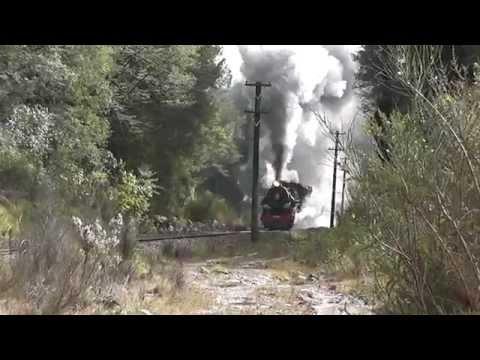 NZ Steam - Full Noise