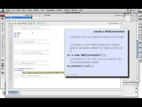 Load And Play Video In ActionScript 3