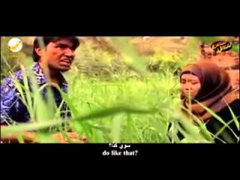 arabic     parady   song