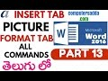 Ms-Word 2016 in Telugu 13 (Insert Picture & Format options)(www.computersadda.com)