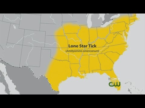 Lone Star Tick Can Cause Red Meat Allergies