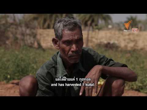 Spirit of Asia : The Tribal Market of Odisha