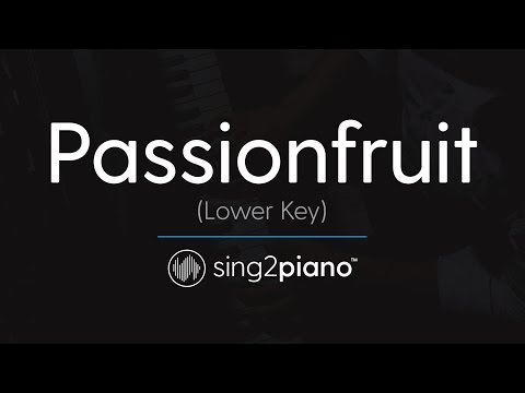 Passionfruit (Lower Piano Karaoke) DRAKE