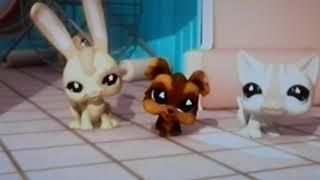 Littlest Pet Shop (Wii): Introducción