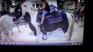 Trapped Pony Bucks Kid Off No One Sees The Warnings - Lots Of Pink & Purple