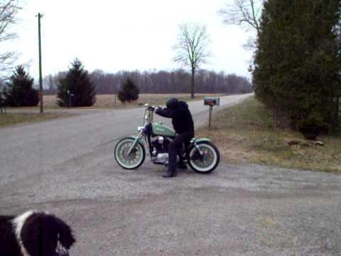 Harley Davidson Custom Bobber for Sale 2