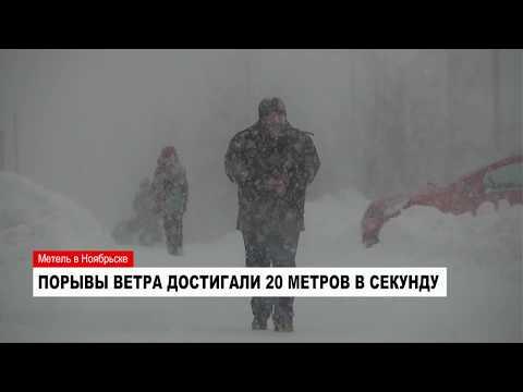Жителям Ноябрьска рекомендуют не выезжать из города из-за сильной метели