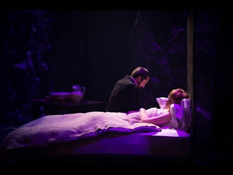 Les Miserables Live- Fantine's Death And The Confrontation