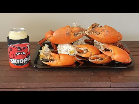 MONSTER MUD CRAB CATCH AND COOK