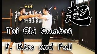 Tai Chi Combat Application - 1. Rise and Fall screenshot 2