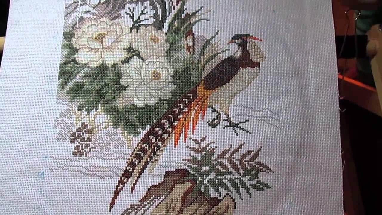 Вышивка фазаны от риолис
